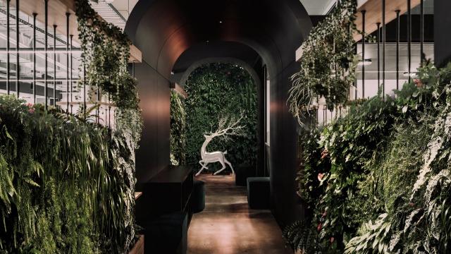 ADCNJobs:影响未来十年的室内设计趋势