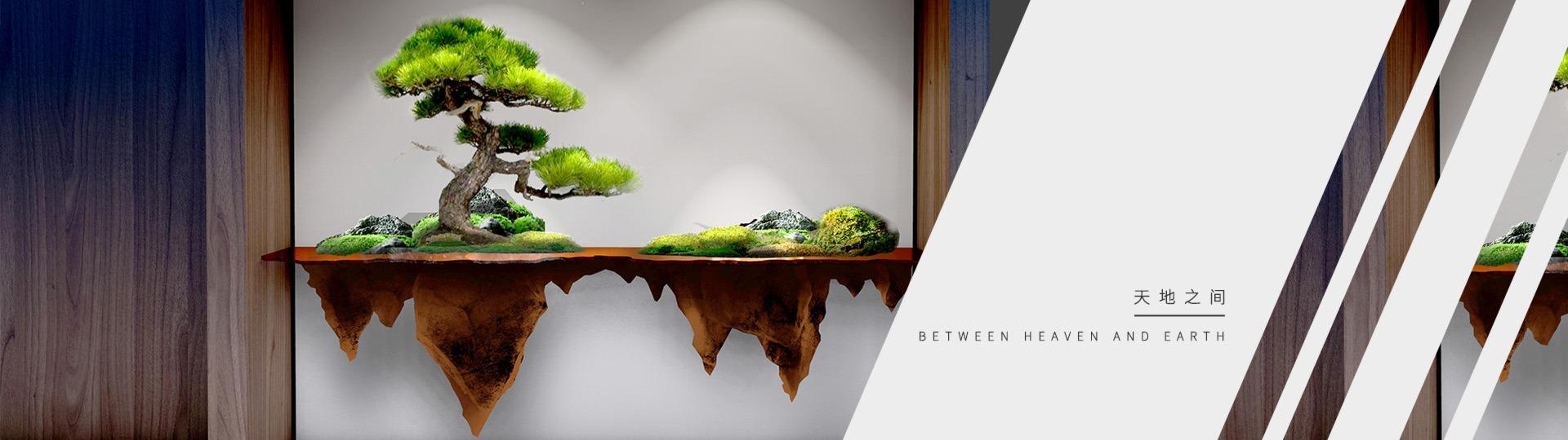 办公室绿化,办公室软装,办公室植物